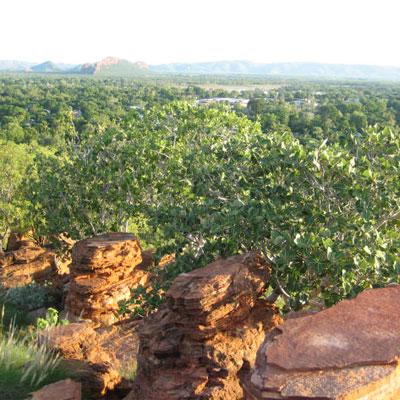 Kununurra Accommodation Deals, Kimberley Croc Motel